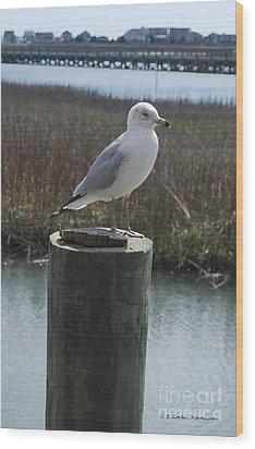 Posing Seagull Wood Print by Gordon Mooneyhan