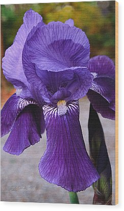 Wood Print featuring the photograph Purple Iris by Robert Kernodle
