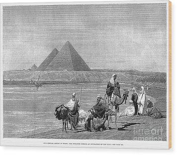 Pyramids At Giza, 1882 Wood Print by Granger