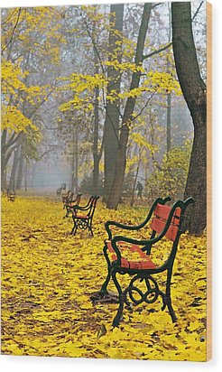 Red Benches In The Park Wood Print by Jaroslaw Grudzinski