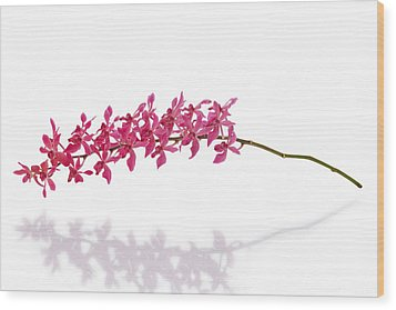Red Orchid Wood Print by Atiketta Sangasaeng