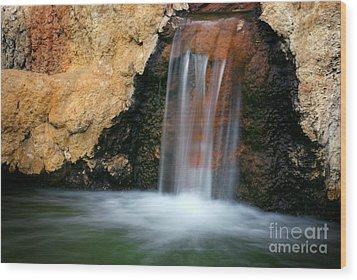 Red Waterfall Wood Print by Carlos Caetano