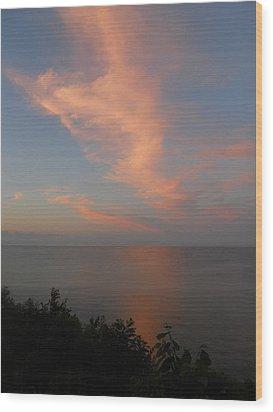 Reflection Wood Print by Sarah Vandenbusch