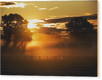 Wood Print featuring the photograph River Of Gold by John Chivers