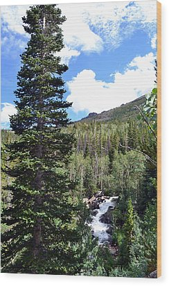 Rocky Mountain National Park2 Wood Print by Zawhaus Photography