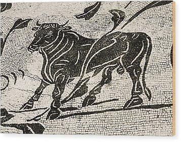 Roman Mosaic, Ostia Antica Wood Print by Sheila Terry