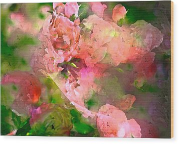 Rose 142 Wood Print by Pamela Cooper