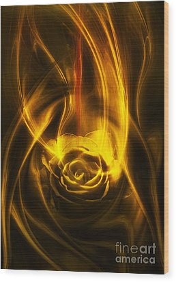 Rose With Red Flow Wood Print