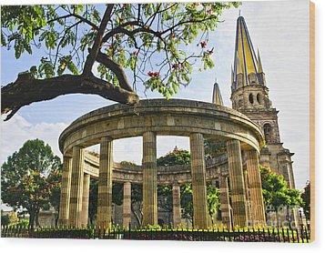 Rotunda Of Illustrious Jalisciences And Guadalajara Cathedral Wood Print by Elena Elisseeva