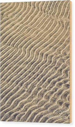 Sand Ripples In Shallow Water Wood Print by Elena Elisseeva