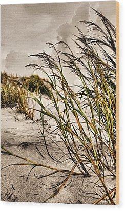 Sea Oats Wood Print by Kristin Elmquist