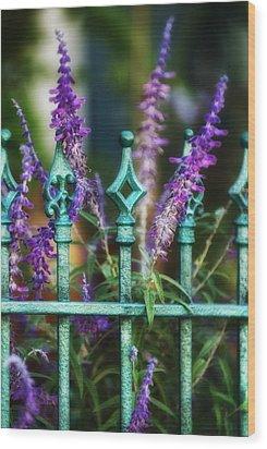 Secret Garden Wood Print by Brenda Bryant