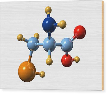 Selenocysteine, Molecular Model Wood Print by Dr Mark J. Winter