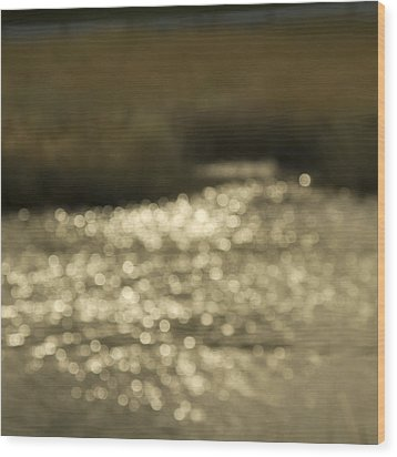 Seurat Sunshine Wood Print by Bob Retnauer