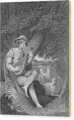 Shepherd Wood Print by Granger