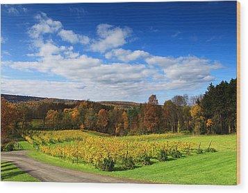 Six Miles Creek Vineyard Wood Print by Paul Ge
