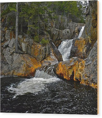 Smalls Falls 3 Wood Print by George Ramos