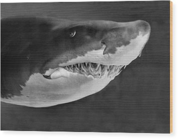 Smile Wood Print by Judith Szantyr