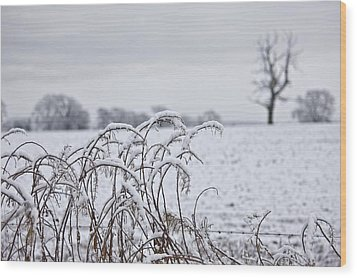 Snow Covered Trees And Field Wood Print by John Short