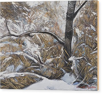 Snow Grass Wood Print by Jack Tzekov