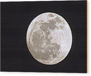Snow Moon Wood Print by Janice Drew