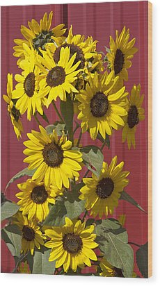 So Many Sunflowers Wood Print by Elvira Butler