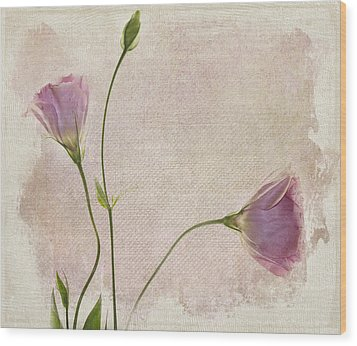Softly Wood Print by Rebecca Cozart