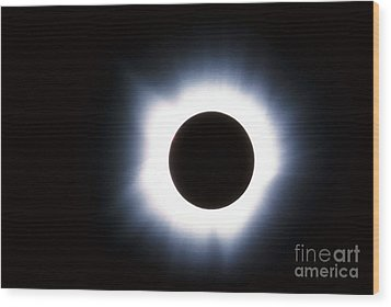 Solar Eclipse Wood Print by Stocktrek Images