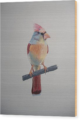 Spring Cardinal Wood Print by Norm Starks