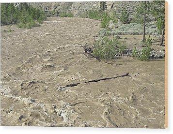 Spring Flood, Nicola River, Canada Wood Print by Kaj R. Svensson