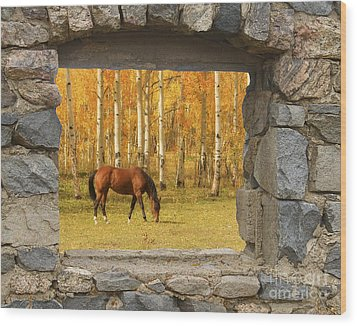 Stone Window View And Beautiful Horse Wood Print by James BO  Insogna