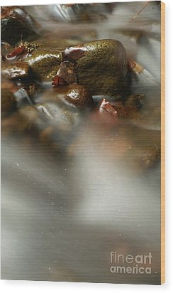 Stones In River Wood Print by Odon Czintos