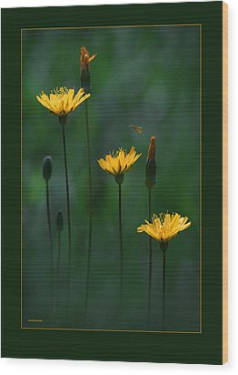 Summer Dining Wood Print by Ron Jones