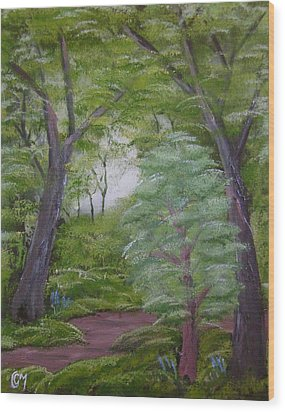 Summer Morning Wood Print by Charles and Melisa Morrison