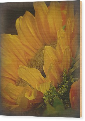 Sunflower Wood Print by Terry Eve Tanner