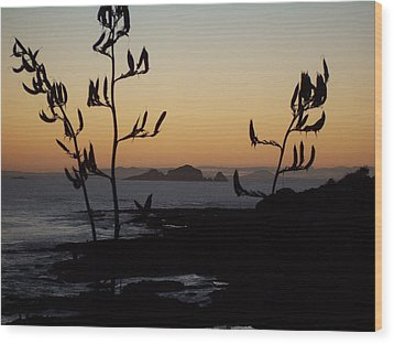 Wood Print featuring the photograph Sunrise On East Coast Of North Island 1 by Peter Mooyman