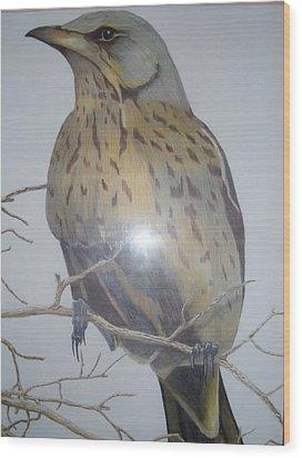 Swedish Bird Wood Print by Per-erik Sjogren