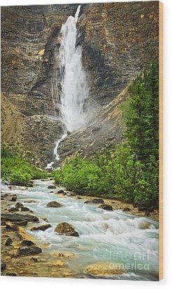 Takakkaw Falls Waterfall In Yoho National Park Canada Wood Print by Elena Elisseeva