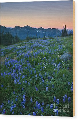 Tatoosh Sunrise Wood Print by Mike  Dawson