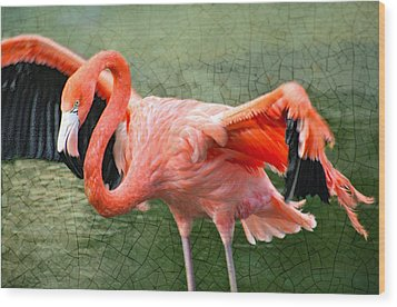 Wood Print featuring the photograph The Flamingo by Rosemary Aubut