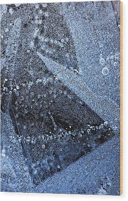 The Ice Wood Print by Odon Czintos