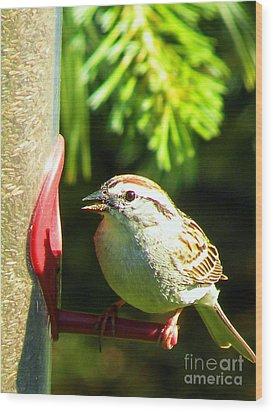 The Sparrow Wood Print by J Jaiam