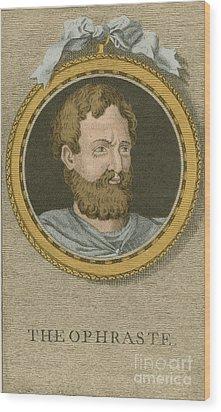Theophrastus, Ancient Greek Polymath Wood Print by Science Source