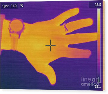Thermogram Of A Hand Wood Print by Ted Kinsman