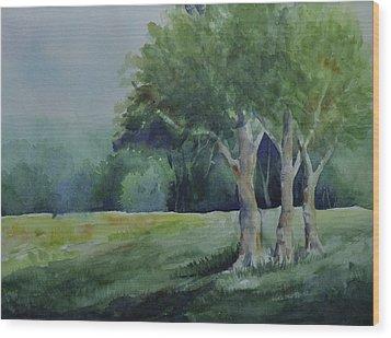 Three Sentinels Wood Print by Sandy Fisher