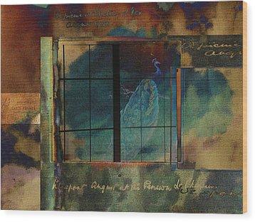 Through A Glass Darkly Wood Print by Sarah Vernon