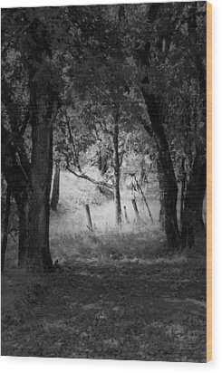 Through The Trees  Wood Print