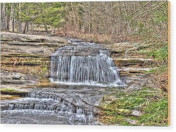 Top Of The Upper Falls Wood Print by Shirley Tinkham