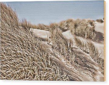 Tranquility Wood Print by Bonnie Bruno