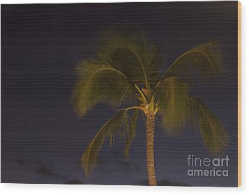 Tropical Paradise Wood Print by Sharon Mau